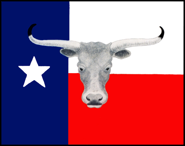 Texas-flag-fixed-sm