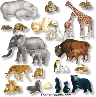 Wild Animals Large